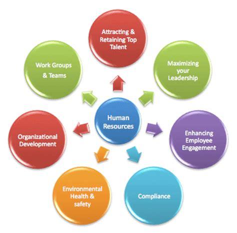 Sample essay management development